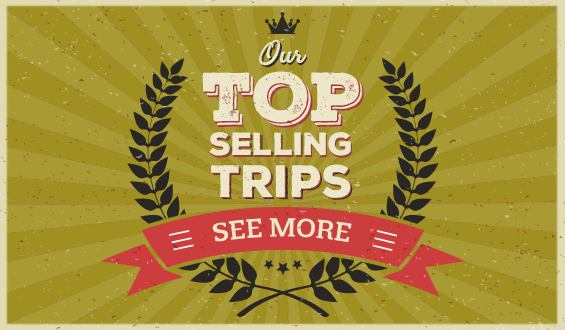 TOP selling trips